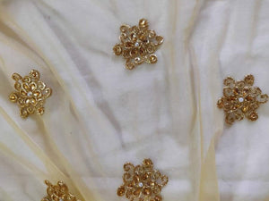 Designer Beige Net Embroidered Fabric FAB177