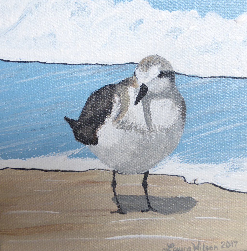 """Sand Darlings"" (Sanderling #4)"