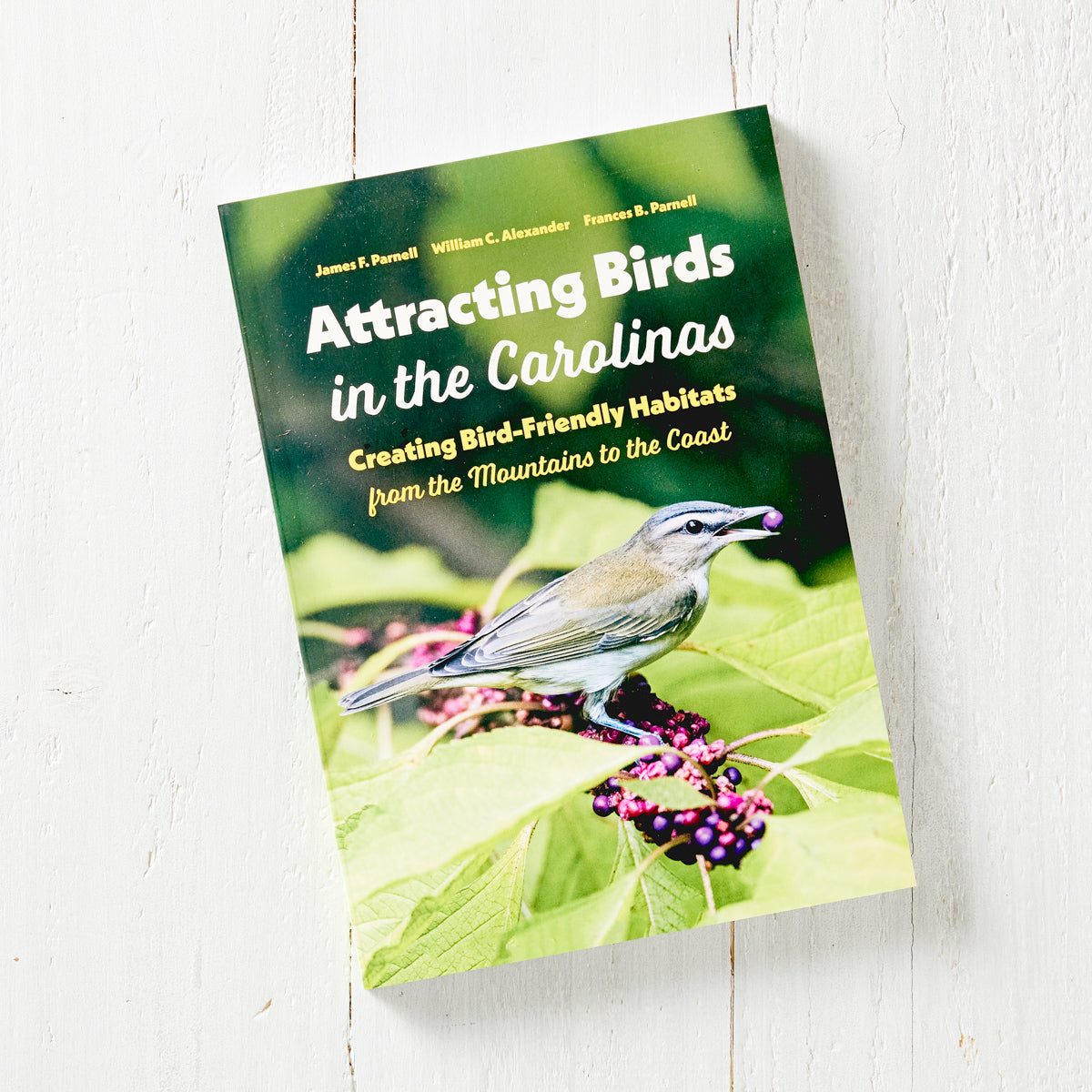 Attracting Birds in the Carolinas: Creating Bird-Friendly Habitats from the Mountains to the Coast