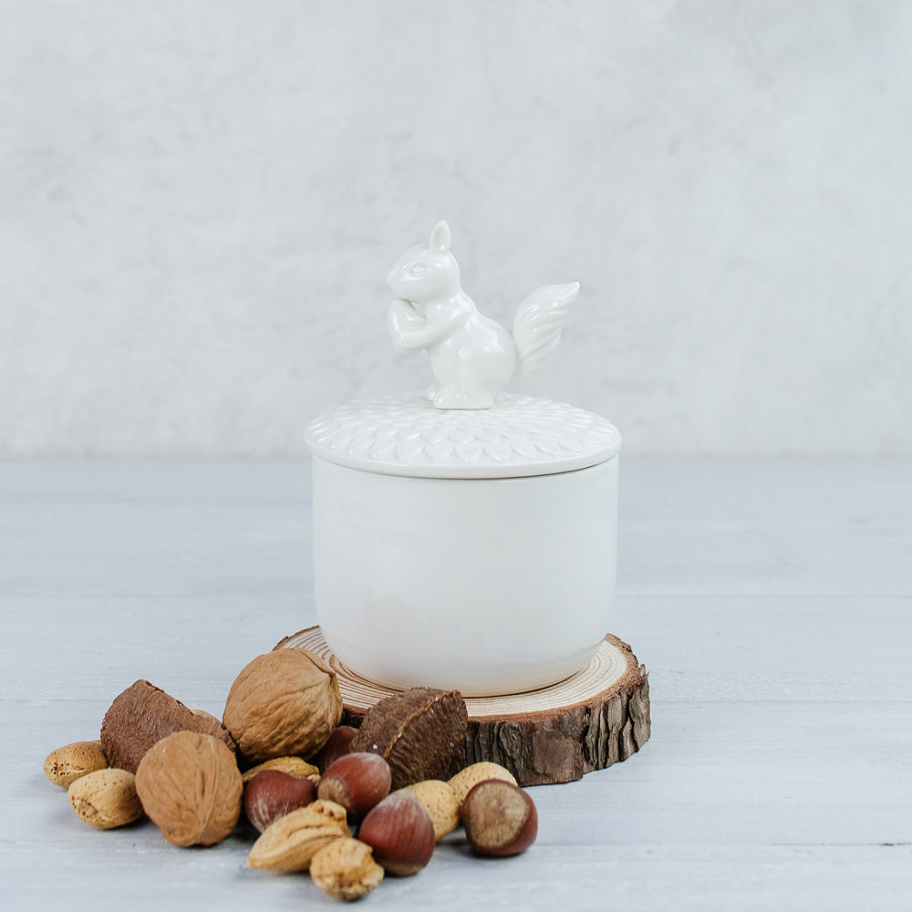 Nutty Squirrel Trinket Dish