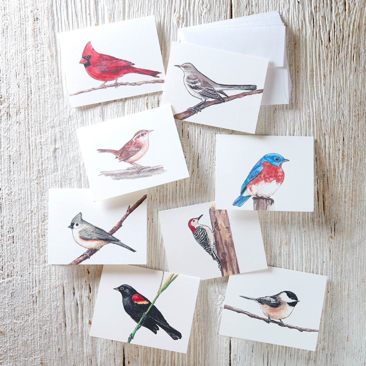 Bird Greeting Card Set