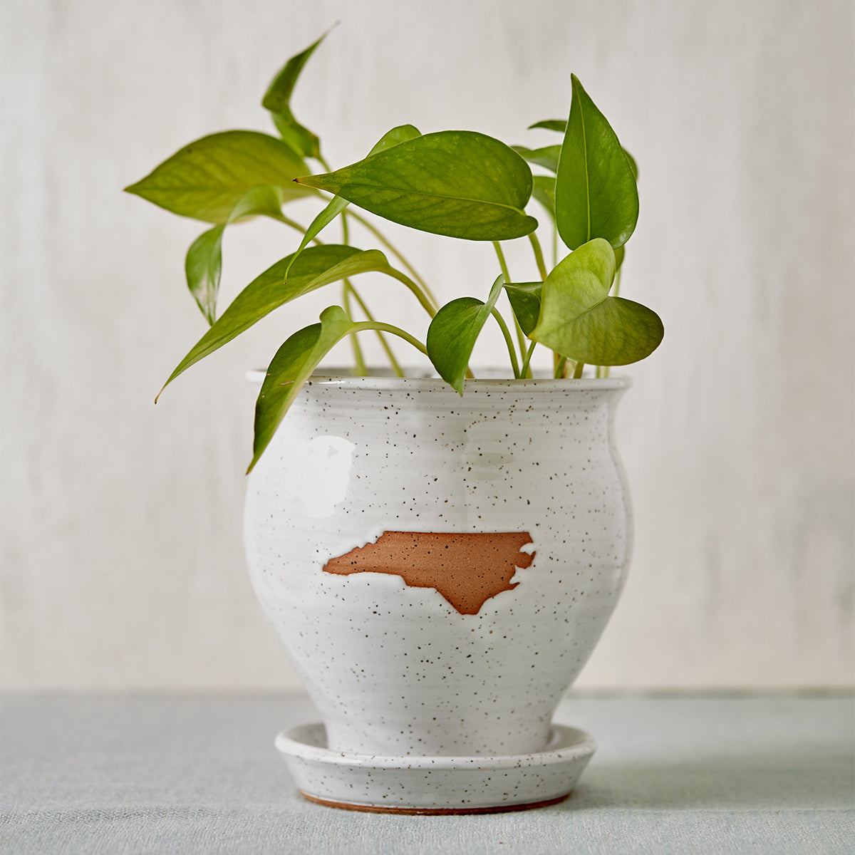 Ivory North Carolina Pottery Planter