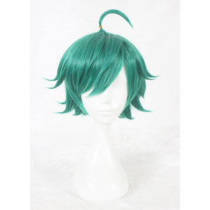 King of Glory-cosplay wig-Animee Cosplay