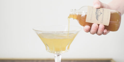 Elderflower Cordial Cocktail - Commonhealth Elderberry