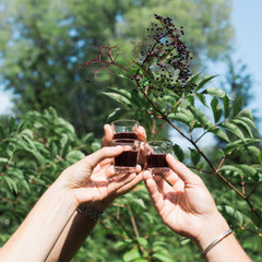 Elderberry Syrup Cheers to Health - Commonhealth Elderberry