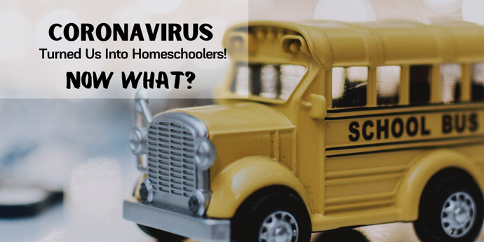 CORONAVIRUS Turned Us Into Homeschoolers - NOW WHAT?