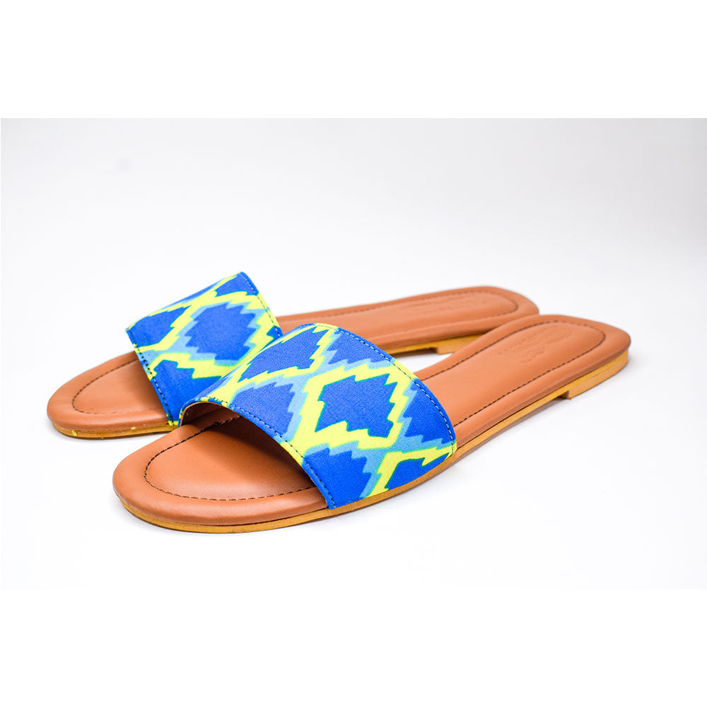 Blue yellow electric slides