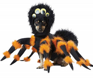 Halloween Spider Costume for Dogs/Cats