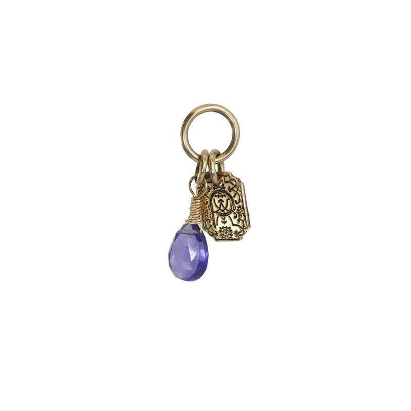 ATTRACTION CHARM - VARIETY OF GEMSTONES - 14K GOLD