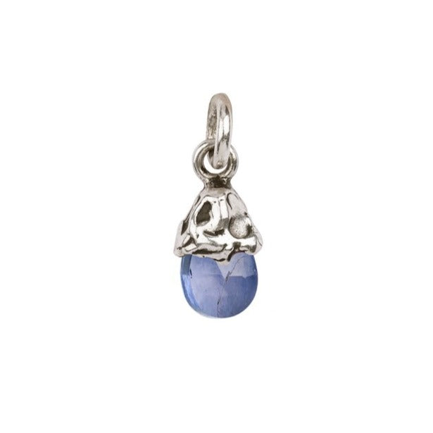 ATTRACTION CHARM - VARIETY OF GEMSTONES - SILVER