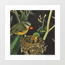 Load image into Gallery viewer, Birdie likes Art Print