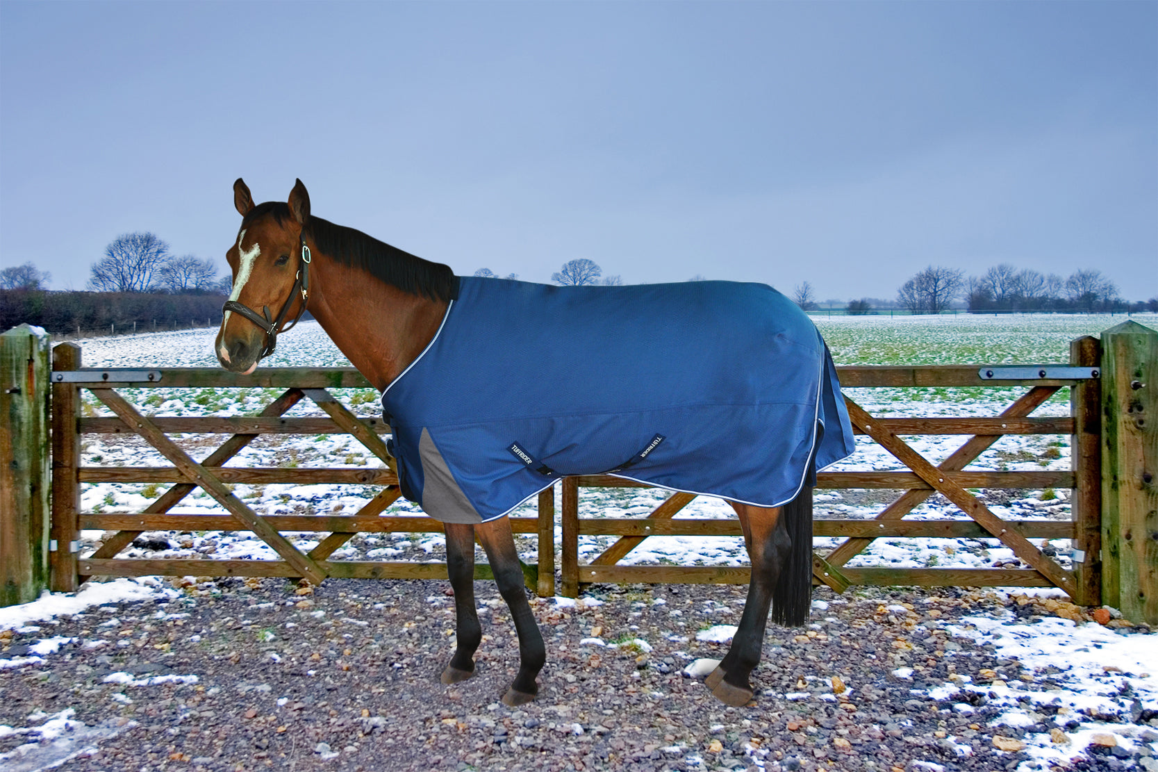Medium Weight Turnout Blankets Jpc Equestrian