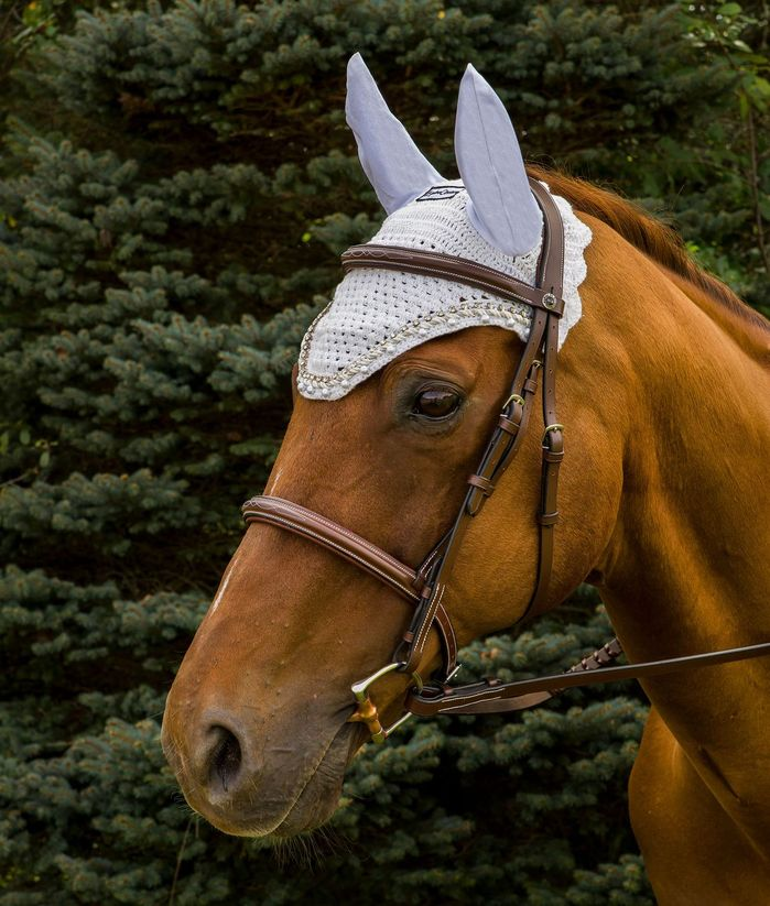 Equine Couture Fly Bonnet with Pearls and Crystals_1