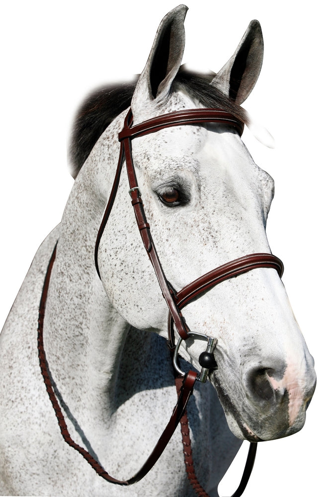 Henri de Rivel Pro Plain Raised Padded Bridle With Anti Press Head Piece and Matching Reins_1
