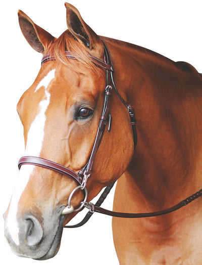 Henri de Rivel Training Bridle_5