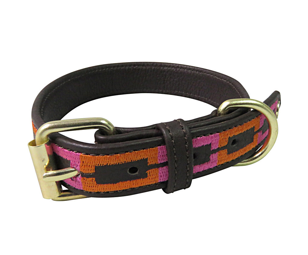 Halo Dog Collar - Leather with Sam Dog Collar_1