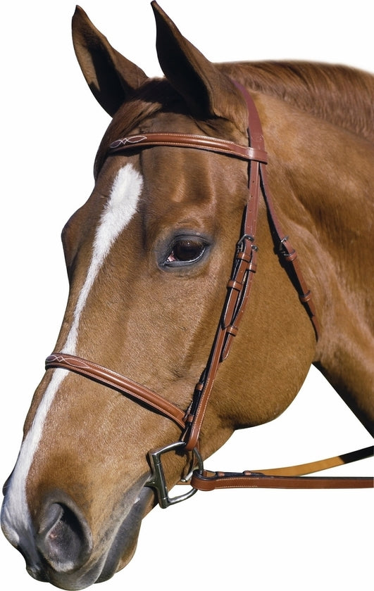 Henri de Rivel Pro Fancy Raised Bridle With Laced Reins_1
