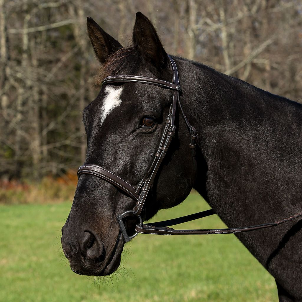 Henri de Rivel Pro Mono Crown Bridle with Padded Wide Noseband  with Laced Reins_1