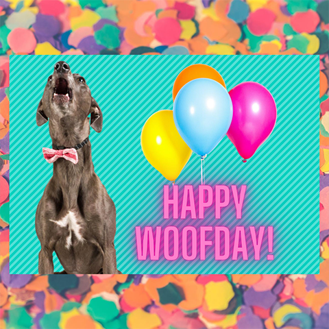 Happy Woofday Card