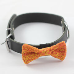 Orange Knitted Dog Bow Tie on a collar