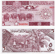 "1987 Somalia 5 Shillings ""Cape Buffalo"" World Currency , Uncirculated"
