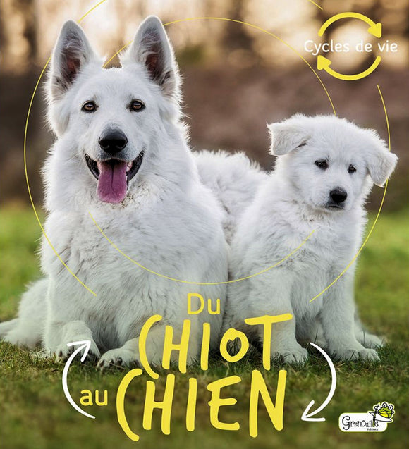 French non-fiction books for young children