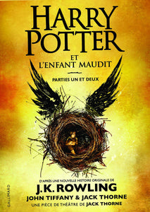 Harry Potter 8 - Harry Potter et l'enfant maudit