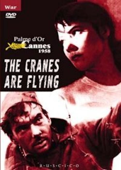 Letyat zhuravli (The Cranes are Flying) DVD