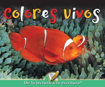 C Level Guided Reading - Colores vivos