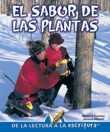 G Level Guided Reading - El Sabor De Las Plantas (Flavors From Plants)