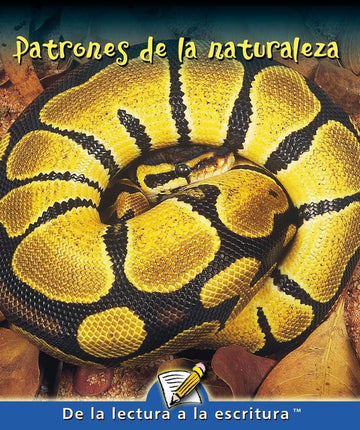 H Level Guided Reading - Patrones de la naturaleza