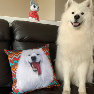 Custom Pet Couch Pillow