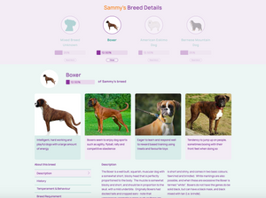 DOG BREED IDENTIFICATION