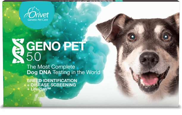 GENOPET 5.0  (Breed + Health Kit)
