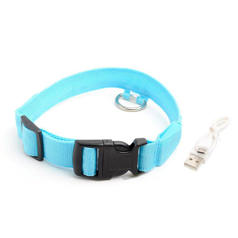 Glow-In-The-Dark LED Dog Collar - USB Rechargeable - Makes Your Dog Visible, Safe & Seen