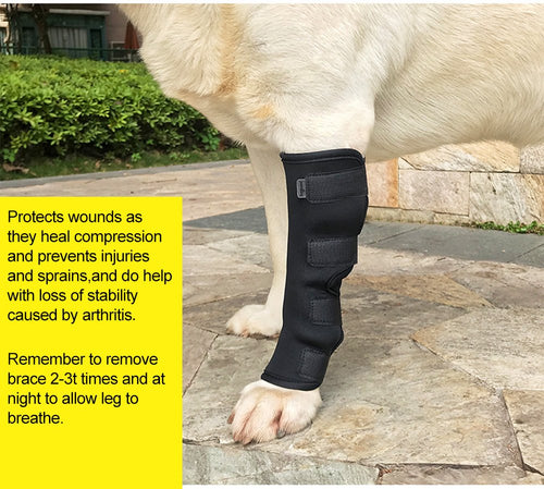 Dog Canine Rear Leg Brace Hock Joint Wrap Protector (1 PAIR)