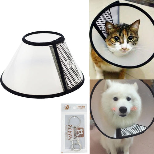 Pet Plastic Clear Cone Recovery E-Collar for Mini Dogs & Small Cats