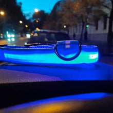 Load image into Gallery viewer, Glow-In-The-Dark LED Dog Collar - USB Rechargeable - Makes Your Dog Visible, Safe & Seen