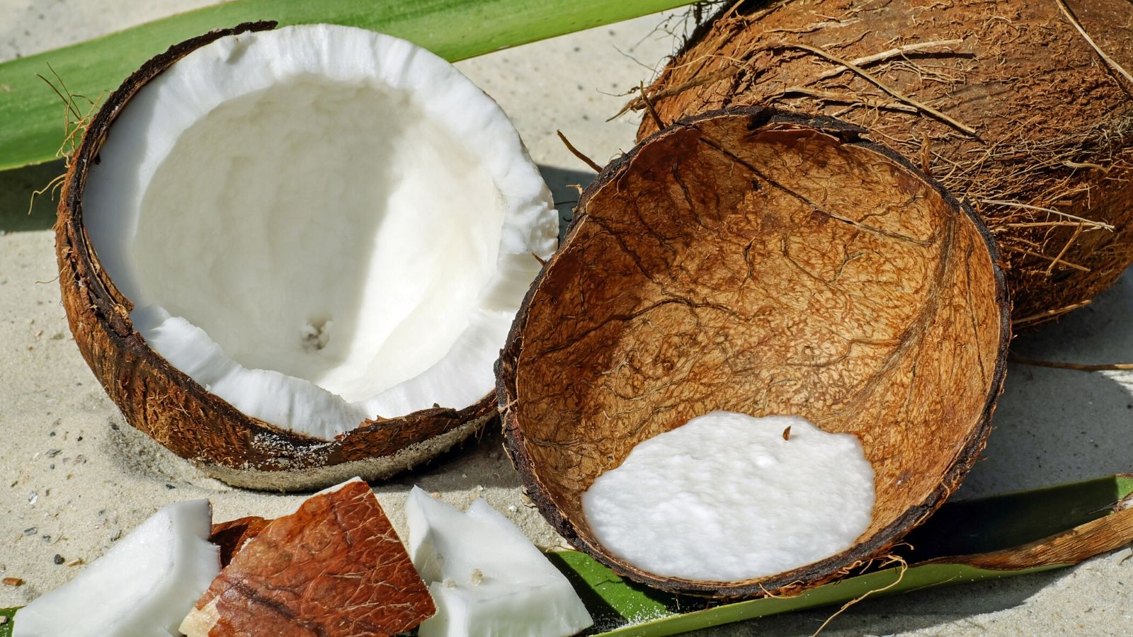 Why Should You Not Use Coconut Oil On Your Face?