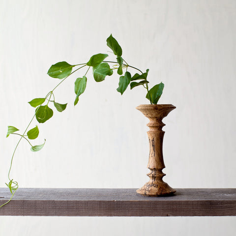 Wormy Wood Bobbin Vase