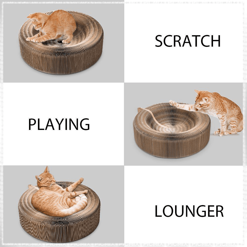 5-in-1 Cat Scratcher Bed