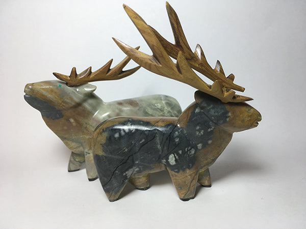 THESE_AMAZING_ELK_ILLUSTRATE_ENRIQUE_S_REMOVABLE_ANTLERS