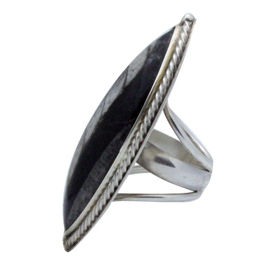 Load image into Gallery viewer, Navajo Handmade Ring, Fossil, Large, Sterling Silver, Hallmark Stamped ALJ