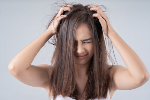 Damaged Hair Due To Dust And Pollution - BBLUNT