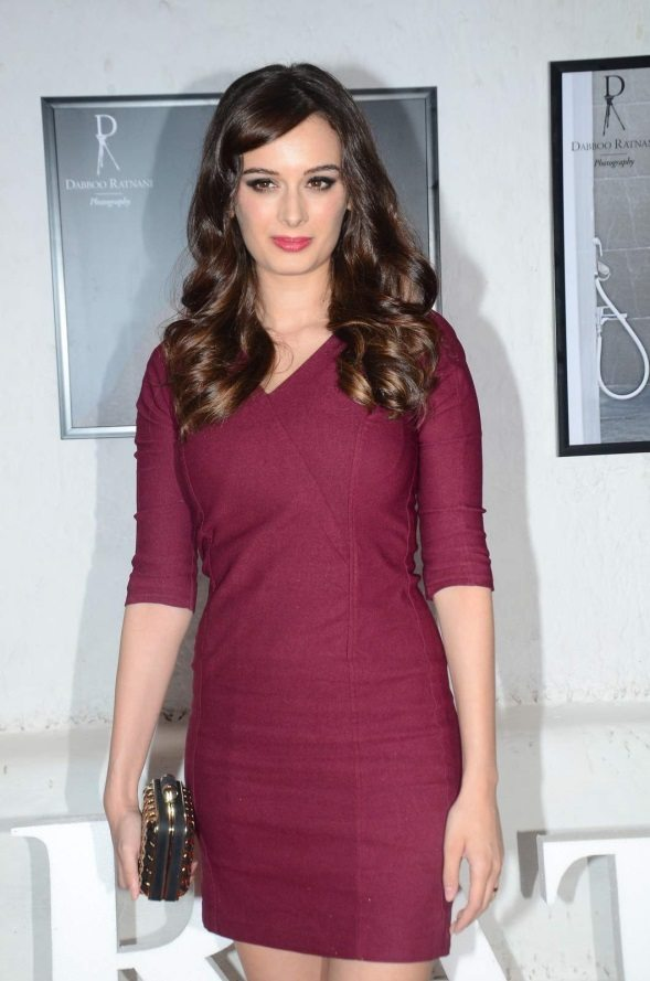 evelyn sharma hairstyles