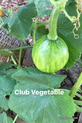 chef e club vegetable