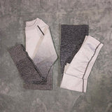 Ombre Seamless Leggings+Cropped Shirts Workout Sport Suit
