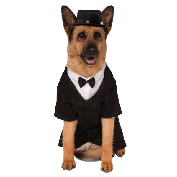Dapper Dog Big Dog Costume, Pet