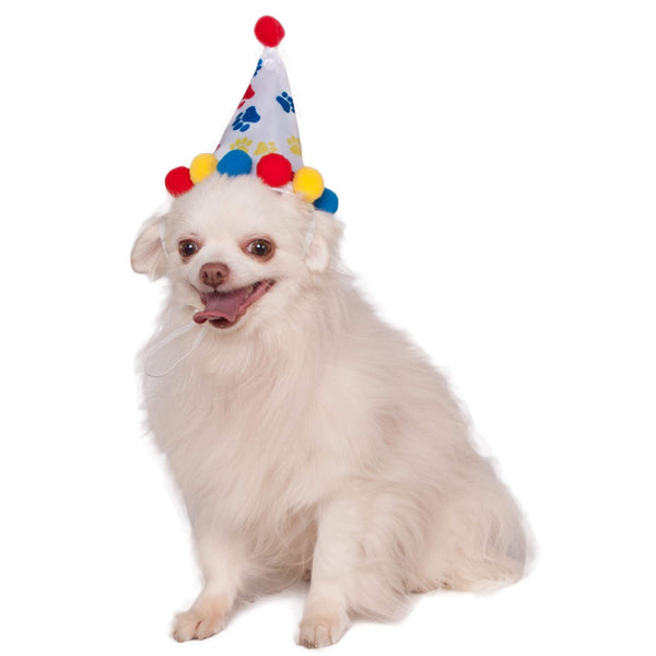 Paw Print Boy Pet Birthday Hat Accessory