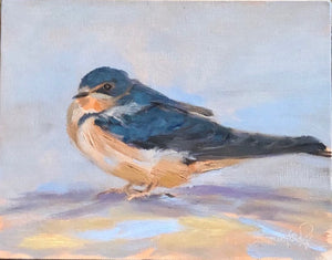 "Barn Swallow study #2, 8""x10"""